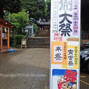 太子堂八幡神社、三茶で神輿