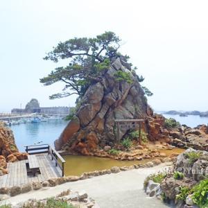 -3-温泉と海、東京癒し島の波湯