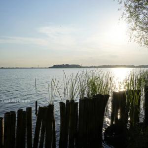 タンデムで茨城の牛久沼