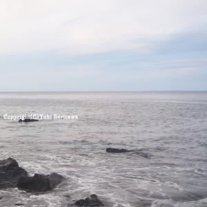 透明度の無い海中