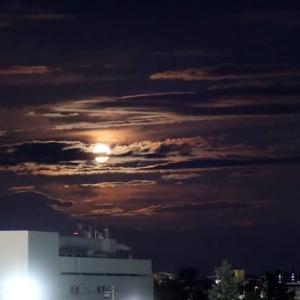 昨夜は満月 & 残暑と老老くらし