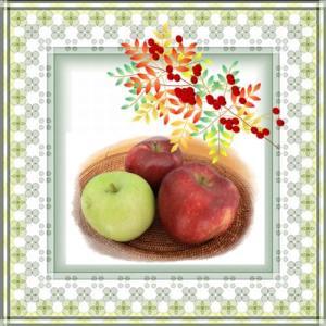 家庭菜園のリンゴ