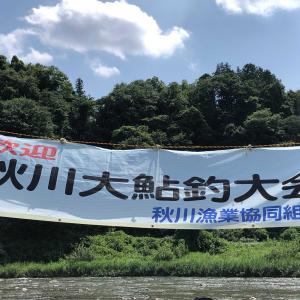 秋川大アユ大会