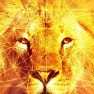 【7/30〆切・8/8開催】ライオンズゲート一斉ヒーリングのご案内