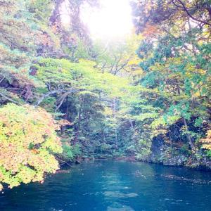 美しい十和田湖【ィトムカの入り江】