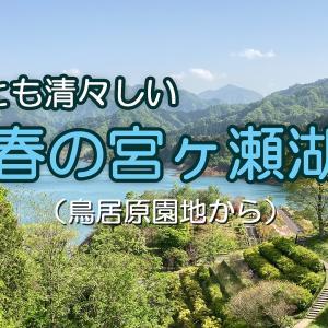 宮ヶ瀬湖(鳥居原園地)(2021年4月30日)