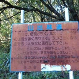 山出林道から羽子山、三森(R2.11.21)