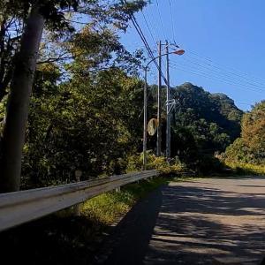 富士五湖一周ツーリング ② ~快走の道志みち~