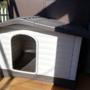 サイラの犬小屋