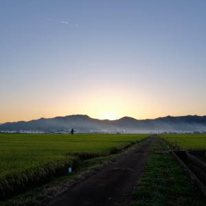 風景★秋の田んぼ