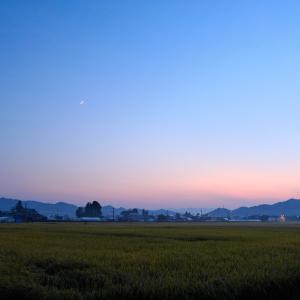 風景★秋の田んぼ 3