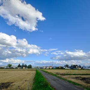 風景★秋の田んぼ 6