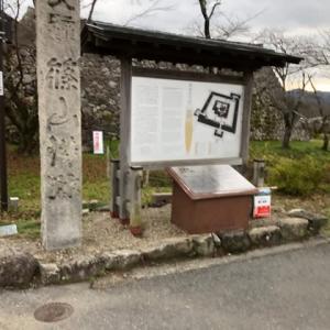 日本100名城 篠山城