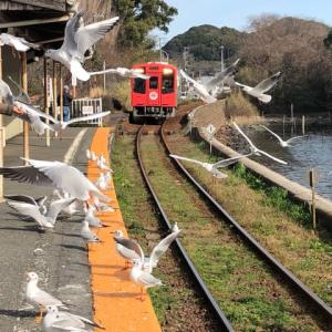 天浜線佐久米駅 ゆりかもめ