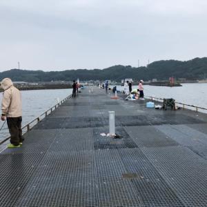 雨の日の豊浜桟橋
