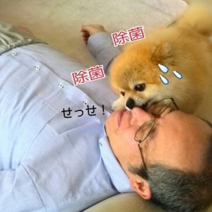 手作りフード付きお洋服(五年前かよ!)