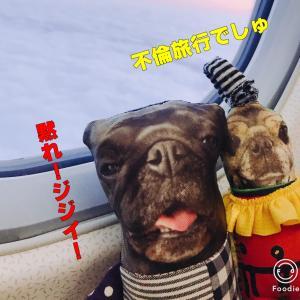 昆布臭愛好会BBAの旅IN名古屋♡1日目~よいこカンガルーを威嚇する編~