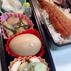 鰻 弁当 NO482