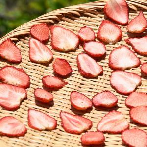 季節終わりのイチゴを食べるなら、そのままよりも干した方が断然美味しく頂けます
