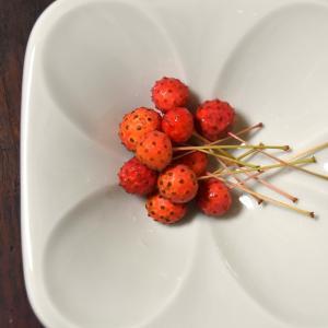娘とヤマボウシの実を摘んで食べてみました