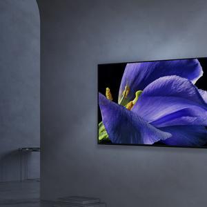【緊急】有機ELテレビと液晶テレビってそんなに画質違うんか?