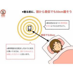 携帯電話の使い方 電磁波の影響