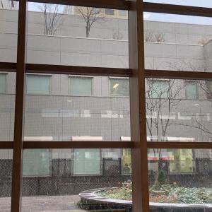 札幌は雪降ってきました!これから 道内は荒れ模様?!