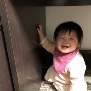 8ヶ月の娘ちゃん!歯がはえてきました♪