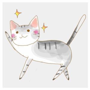 お金猫ちゃん
