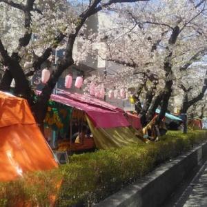 モモシキ無しでもOK・・・ポカポカ陽気の東京大田区です