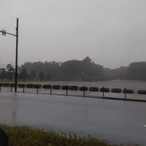 台風14号・・・皇居周辺、今朝の様子