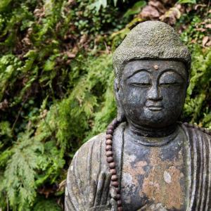 今日はブッタの誕生日。慈悲の瞑想 『私を嫌っている人々も幸せでありますように』