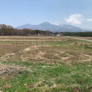 畑の微生物が、私のことを『あんこリエ』と。。。。日本の母ちゃんになってと。。。微生物と繋がった