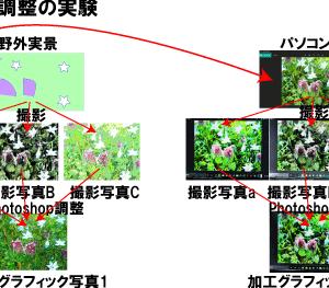 パソコン画面写真の加工グラフィック写真実験