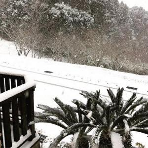 関東の雪とスキー