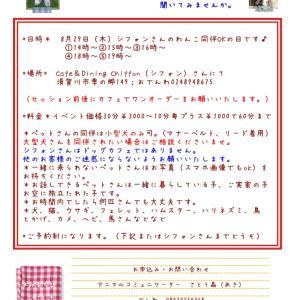 8月29日はシフォンさんで1日アニマルコミュニケーションday♪