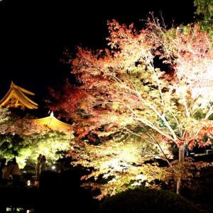 京都にはまってます -東寺- ライトアップ