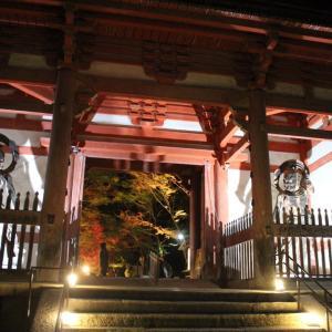 醍醐寺 のライトアップ -見頃-