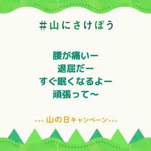 山にさけぼう( ◠‿◠ )