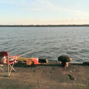もっと釣りに行くための節約術(auスマホからMVNOに変更して1か月約5000円の節約)