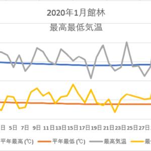 館林1月の気温のグラフ