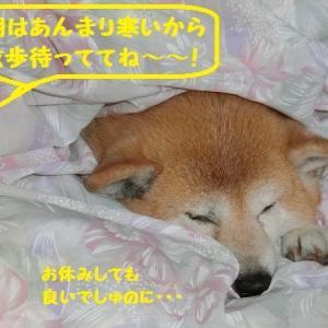 どっちが先? (^∇^)