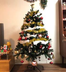 今日はクリスマスツリーの日、なんだそうです。