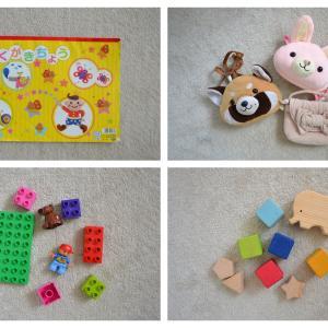 【おもちゃ収納】IKEAトロファストおもちゃ収納には写真ラベルがおすすめ!幼稚園女子おもちゃラベル公開