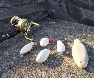 ◆トップ&ビッグベイト230mmのテスト…明石の釣り@ブログ