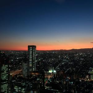 東京都庁展望室からの夕景と富士山