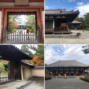 京都もいいけど、奈良でしょ