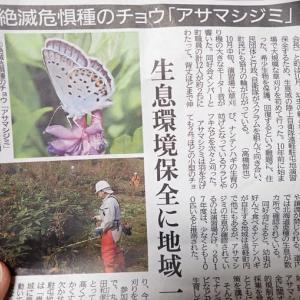 2019年秋、絶滅危惧種の蝶イシダシジミの生息地で草刈り