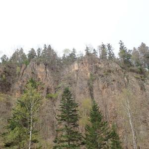 壮大な屏風岩にジョウザンシジミ新産地発見