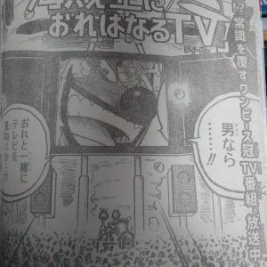ワンピースバラエティ「海賊王におれはなるTV」 9月18日24:55放送